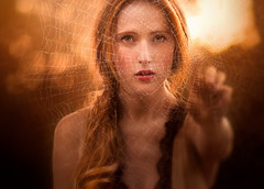 Webs ({jessica drossin}) Tags: jessicadrossin portrait woman landy girl redhair lace orange halloween web spider touch reach bokeh dark wwwjessicadrossincom
