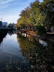 Autumn morning (Maria Eklind) Tags: himmel sweden malmö autumnmorning sky skånelän sverige se