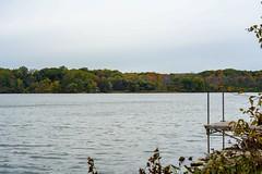 Fall on Cootes Paradise Hamilton Canada (AncasterZ) Tags: yashicaml50mmf17 cootesparadise autumn fall