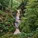 Cynfal falls,  Snowdonia, Wales