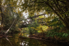 The old Windesheim trestle (Parchman Kid (Jerry)) Tags: the windesheim trestle train bridge creek river ducks trees rusty old reflections reflection color colors parchmankid sony a6000 samyang 12mm landscape natural hdr