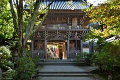 Japan: Miyajima, Daisho-in Niomon Gate (Henk Binnendijk) Tags: shrine hatsukaichi hiroshima japan miyajimaisland daishoin temple buddha shingon buddhism