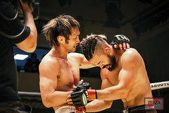8Y9A6781-220 (MAZA FIGHT JAPAN) Tags: shooto mma grachan mixed martial arts onechampionship tokyo sakamoto pancrase deep gracie renzogracie angelalee hasegawa vvmei aokishinya fight fighting otacity mixedmartialarts cage ring boxe boxing