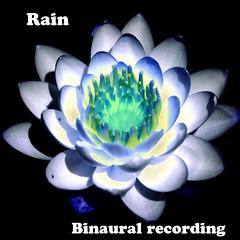 rain (Bookriver.) Tags: rain japan takahiro fujita art meditation binaural
