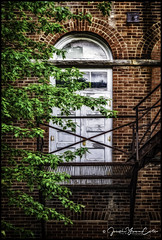 P5150545b-EditLOGO (john.cote58) Tags: window decay brick alleys fortville indiana indianapolis abandoned old antique aged architecture building outside outdoors town wall bricks rural street alley reflection glass dark dingy dirty contrast josephyvoncote photography professional fineart door doorway tree leaves branch fireescape metal stairway creativeedit