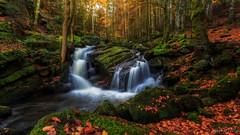 Vallee du Couzon (Bob Guedin) Tags: forez cascade waterfall auvergne puy de dome automne autumn