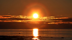 SUNSET OVER  ST. LAWRENCE RIVER  |   REFORD GARDENS   | LES JARDINS DE METIS  |  COUCHER DE SOLEIL  |   GASPESIE  |  QUEBEC   |  CANADA (J P Gosselin) Tags: sunset over st lawrence river | reford gardens gaspesie quebec canada canon 7d 7dmarkii rebel t2i canonrebelt2i eos canon7d markii rebelt2i canonrebel canont2i eost2i eos7d eos7dmarkii mark 2 mark2 eos7dmark2 canon7dmarkii ii canoneosrebelt2i canoneos7d canoneos ph:camera=canon coucher soleil les jardins de metis flickr