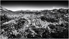 A small Cloud... (Ody on the mount) Tags: anlässe berge em5ii fiss fototour gipfel landschaft mzuiko918 omd olympus urlaub wolken bw clouds landscape monochrome sw österreich tirol at