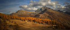 My favorite place. (rinogas) Tags: italy piemonte sestriere autumn color tree mountain rinogas