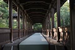 passage (ababhastopographer) Tags: kyoto arashiyama tenryuji roofedpassage corridor 京都 嵐山 天龍寺 回廊 渡り廊下 afternoon 午後 西日 sunray 日差し zen 禅