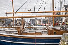 Les 3 goélands - Honfleur HDR+DxOFP LM+35 1007095 (mich53 - thank you for your comments and 6M view) Tags: normandie calvados honfleur harbor france frankreich bateaux boat télémètre entfernungsmesser rangefinder leicamtype240 summiluxm35mmf14asph goéland architecture port hdr