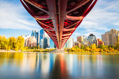 Peace Bridge Fall Season (Bluesky251) Tags: alberta beautiful blue bow bowlake bridge bright buildings calgary canada cloud cloudline color colorful commerical daylight daytime design downtown exposure fall forest home landscape leaves lifestyle light natural nature orange outdoor outside peace peacebridge pedestrian plant popular public red river rock season shrub sky skyline trees water weather yellow photography