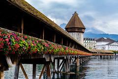 Flowers on the Kapellbrücke, Lucerne Switzerland (pa_cosgrove) Tags: kapellbrücke lucerne switzerland flowers covered bridge river