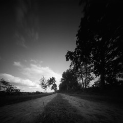 The road goes ever on and on (Rosenthal Photography) Tags: ff120 20180903 landschaft lochkamera 6x6 realitysosubtle6x6 schwarzweiss anderlingen ilfordlc2912922°c55min bäume pflanzen epsonv800 pinhole mittelformat städte feld strase ilfordpanfplus analog asa50 dörfer siedlungen road path pathway way track trail street landscape trees sun summer august realitysosubtle rss inford panf panfplus lc29 129 epson v800