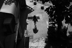 婦人|秋紅谷 (briandodotseng59) Tags: asia taiwan street streetphoto nikkor nikon digital ccd d80 road black white blackwhite light shadow urban city grey sun tree nature daily 台灣 台中 秋紅谷 黑白 人 people old classic