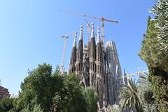 DSC_1478 (georgedimitriadis303) Tags: barcelona catalonia spain travel lasagradafamilia churches architect antonigaudí