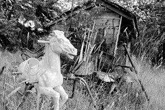 Rushing to the apocalypse (PhotonArchive) Tags: abandoned decay horse unloved toy creepy apocalypse theend blackandwhite monochrome oldshed field death alone old journey grass