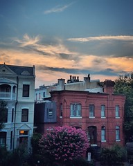 summer night (ekelly80) Tags: dc washingtondc summer august2018 night sky clouds view flowers crepemyrtle rowhouses evening light sunset sun glow