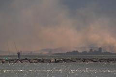 La quema (*Nenuco) Tags: mar sea valència pinedo alburera humo smoke arroz pescador fisherman nikon d5300 tamron 70300 jesúsmr
