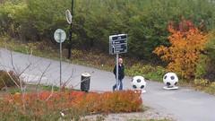 (Foot)bollards (skumroffe) Tags: bollards bollard footballs football fotbollar fotboll råsunda solna stockholm sweden