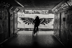 wings (Daz Smith) Tags: best dazsmith fujifilmxt3 xt3 fuji bath city streetphotography people candid citylife thecity urban streets uk monochrome blancoynegro blackandwhite mono bearpit bristol silhouette bike rider bicylce wings mural graffiti art