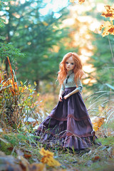 Autumn colors (hoe-nir) Tags: souldoll lev bjd doll hybrid minifee