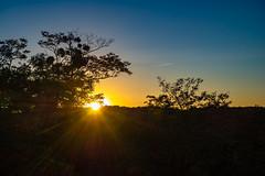 Coucher de soleil au Viaduc des fauvettes (Daniel_Hache) Tags: coucherdesoleil fauvettes sunset viaduc gometzlechatel gometzlechâtel essonne france fr
