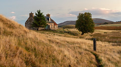 Lochnellan Croft in the Sun (Geoff France) Tags: dava davamoor croft cottage abandonedcroft higlands scottishhighlands landscape scottishlandscape moor grasses cairngorms