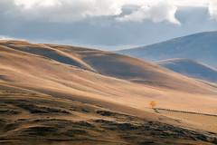 Меланхолия осени #maksileni, #Максименко_Леонид, #Leonid_Maksimenko, #Landscapephotography, #своифото, #пейзаж, #природа, #утро, #рассвет, #дерево, #натура, #восход, #sunrise, #nature, #tree, #Landscape, #sun, #своифото, #пейзаж, #природа, #утро, #рассвет (ЛеонидМаксименко) Tags: bestofrussia uralinsta сониа6000 maksileni leonidmaksimenko foggy natgeoru nature небо природа натура дерево etonashural sun рассвет своифото sunrise natgeorussia сониальфа landscapephotography пейзаж восход sonyalpha небоголубое утро лучи sonya6000 tree landscape natgeoyourshot туман максименколеонид