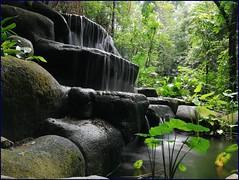 13 waterfall @ Sentosa nature walk (j0035001-2) Tags: singapore sentosa park nature megaadventurepark naturewalk imbiahtrials silky