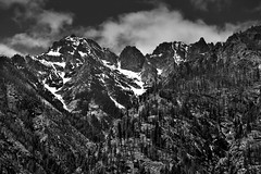 Castle Rock and Other Peaks of Bonanza Massif (Black & White, North Cascades National Park Service Complex) (thor_mark ) Tags: azimuth246 blackwhite blueskies bluesskieswithclouds boatride boatridetostehekin bonanzamassif capturenx2edited cascaderange castlerock centralnorthcascades colorefexpro day4 evergreentrees evergreens ferryride hillsideoftrees ladyofthelake lakechelannationalrecreationarea landscape lookingwest mountainpeaks mountains mountainsindistance mountainsoffindistance mountainside nature nikond800e northcascadesnationalparkservicecomplex outside pacificranges partlycloudy project365 rollinghillsides snowonfaroffmountainpeaks snowcapped sunny trees triptonorthcascadesandwashington lakechelannationalrecreation washington unitedstates