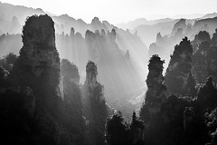 Land of a Thousand Summits (One_Penny) Tags: asia canon6d china travel travelphotography landscape nature summit hill peak light sun sunrays morning sunrise dawn black white blackandwhite bnw bw zhangjiajie forest park zhangjiajienationalforestpark hunan wulingyuan mountain mountainscape scenic