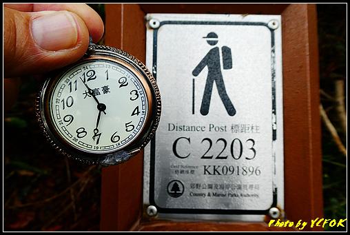 P1000536