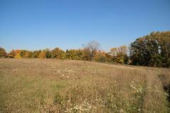 Maybury-State-Park-Field_Northville-MI_10-07-2011i (Count_Strad) Tags: mayburystatepark maybury state park northville michigan mi fallcolor field