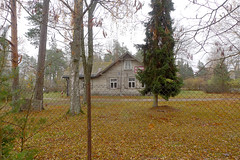 House for sale (claudipr0) Tags: lettland baltikum latvia strand ostsee sea beach balticsea kiefern birken birch pinetrees saulkrasti
