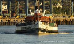 PS Waverley (© Freddie) Tags: essex thurrock grays heritagewharf thames riverthames tilburydocks pswaverley paddlesteamer steampowered fjroll ©freddie