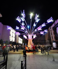 magic butterfly tree (rafasmm) Tags: magic butterfly tree łódź lodz night nightonearth nikon d90 sigma 1020 ex color lightmovefestival 2018 light move festival lights