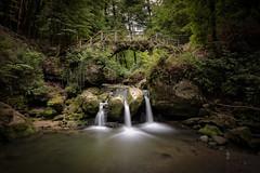 Cascades de Mullerthal (pogona) Tags: rouge 7d canon7d markii 1022mm nd1000 mullerthal cascade letzebuerg luxembourg paysage landscape forest forêt tdb thierrydebleye pogona