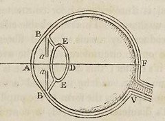 This image is taken from Page 123 of The elements of optics: designed for the use of students in the university (Medical Heritage Library, Inc.) Tags: geometrical optics wellcomelibrary ukmhl medicalheritagelibrary europeanlibraries date1818 idb29298088