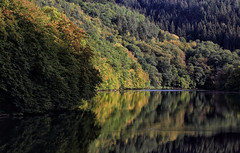 Autumn Overture (AnyMotion) Tags: littledhron kleinerdhron dam talsperre forest wald autumntinting herbstfärbung reflection spiegelung water wasser 2018 anymotion nature natur germany valleyofkleinerdhron hunsrück rhinelandpalatinate rheinlandpfalz deutschland travel reisen 6d canoneos6d autumn fall herbst automne otoño landscape landschaft landschaftsaufnahmen