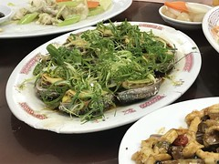 IMG_3721 (theminty) Tags: hongkong seafood laufaushan theminty themintycom travel crabs crab fish shrimp abalone scallops clams razor