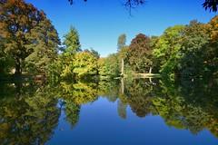 Think twice (Tobi_2008) Tags: teich pond spiegelung reflection diesbarseusslitz bäume trees sachsen saxony deutschland germany allemagne germania