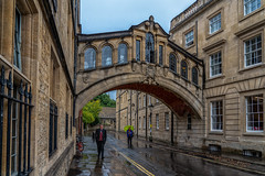 Tradición.... - Oxford (bervaz) Tags: sony a7rm3 24105mm sonyfe24105mmf4goss inglaterra england oxford reinounido lluvia rain puente bridge puentedelossuspiros hertfordbridge newlanecollege