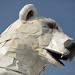 Long View, A Polar Bear Stands in the Desert