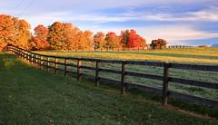 Rhythm of Fences (Daniel Q Huang) Tags: foliage autumn farmland landscape fall colours
