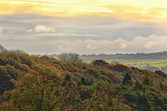 Morning colour (acerman17) Tags: morning clouds nature autumn colour trees foliage woodland