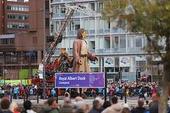 giantspectaculal liverpool 2018 (dekers) Tags: canningdock albertdock strand