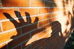 Hello (rafalweb (moved)) Tags: self selfie shadow sunlight brick canon eos 7d efs 1755 texture
