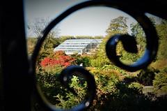 The Glasshouse (stavioni) Tags: rhs wisley glasshouse glass house surrey