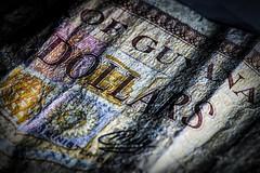 Paper money (vinnie saxon) Tags: folded hmm macro money paper creased wrinkled crinkled macromondays